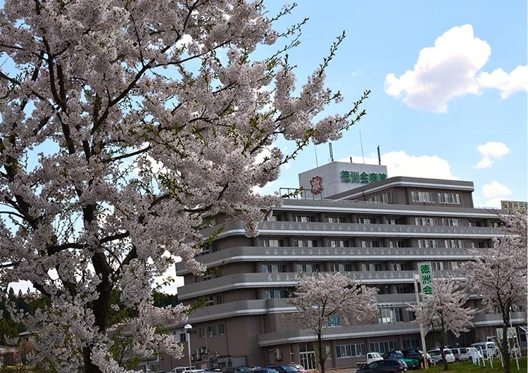 災害支援 看護師 ジャパンハート
